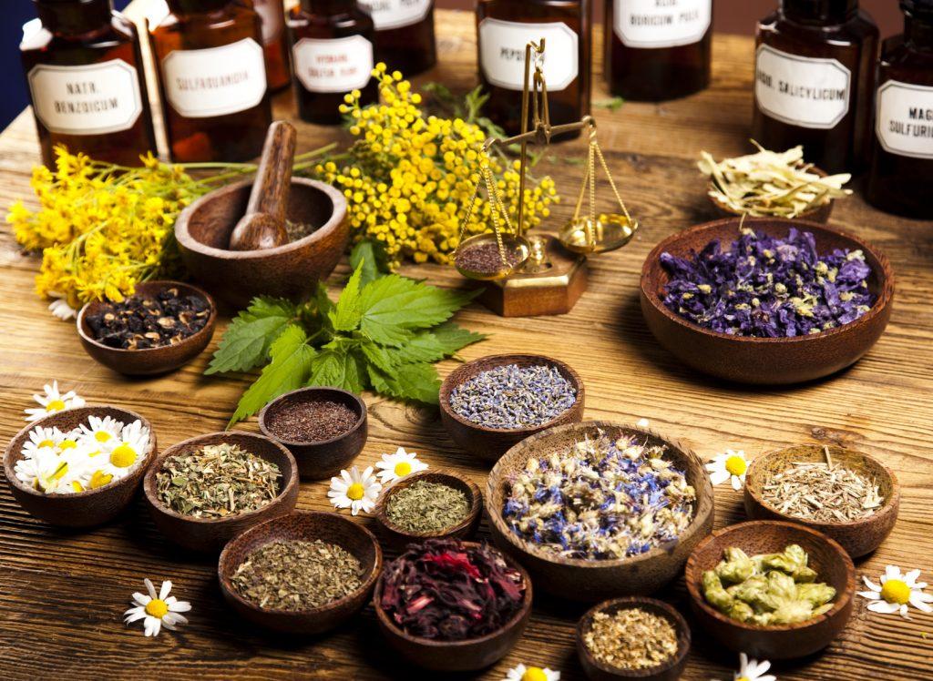Physic Garden (Botanical Herbs)